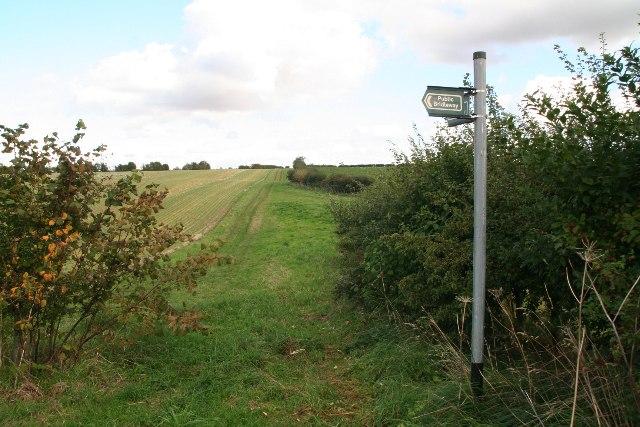 Bridleway to Hendale Wood