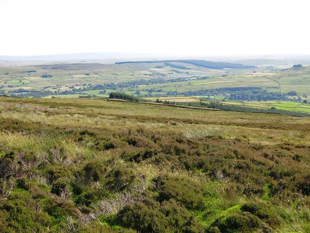 Moorland above Brown Dodd (2)