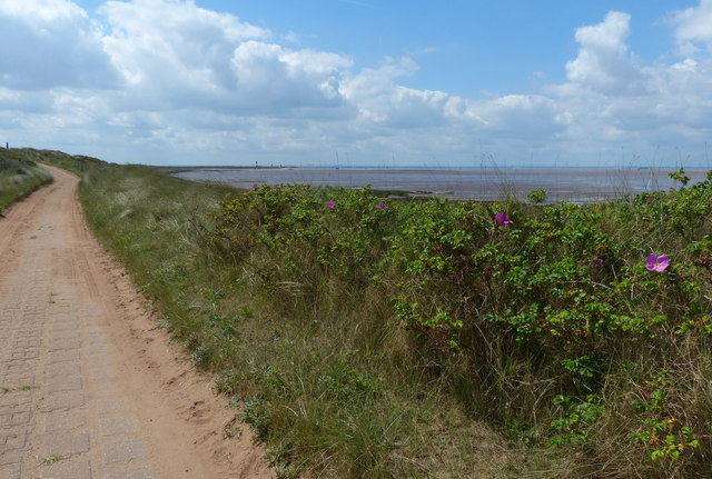 Road to Spurn Point