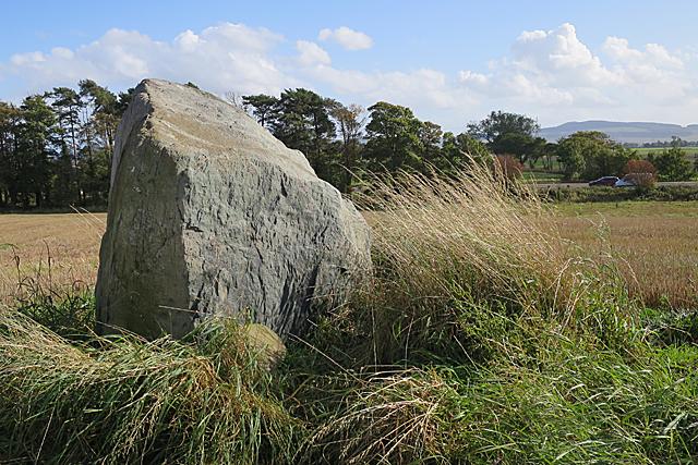 Inchmartine Standing Stone (5)