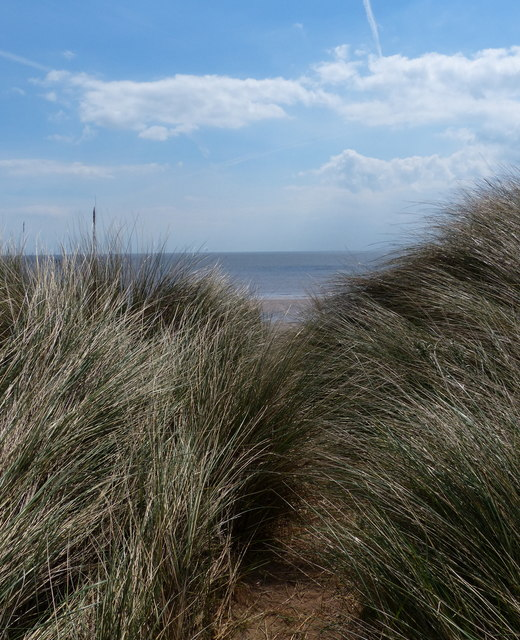 Dunes next to the road on the Spurn Head Spit