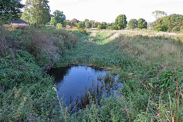 Canal Feeder