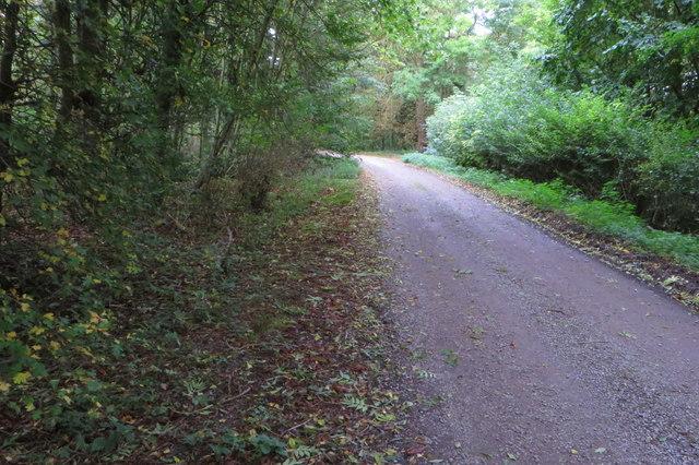 Bridleway to Pictshill Farm