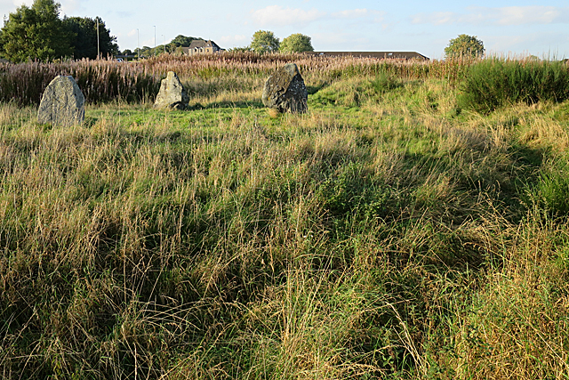 Broomend of Crichie Stone Circle (7)