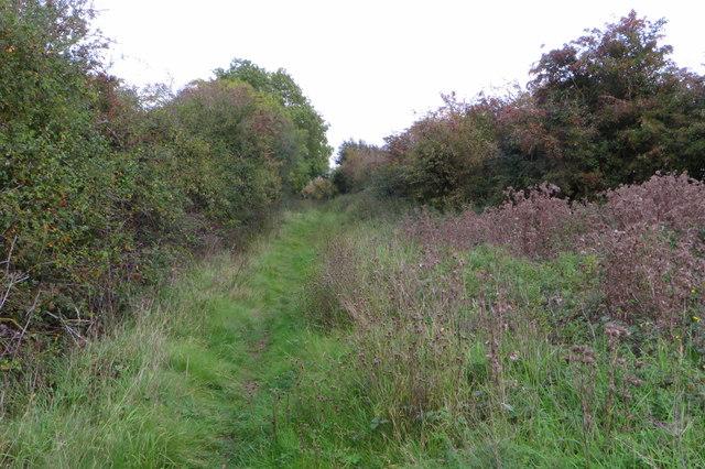 Stevington Country Walk along the old railway