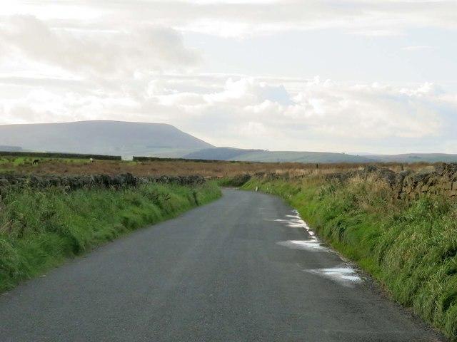 Delves Lane to Nelson