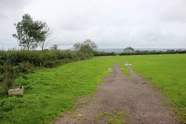 Field Entrance on Combpyne Hill