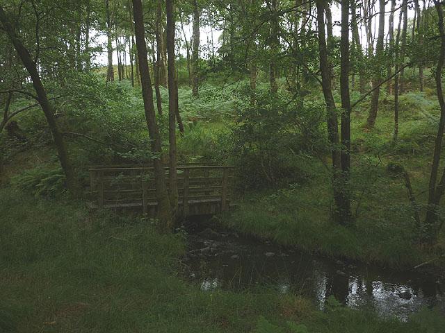 Footbridge in Seatle Plantation