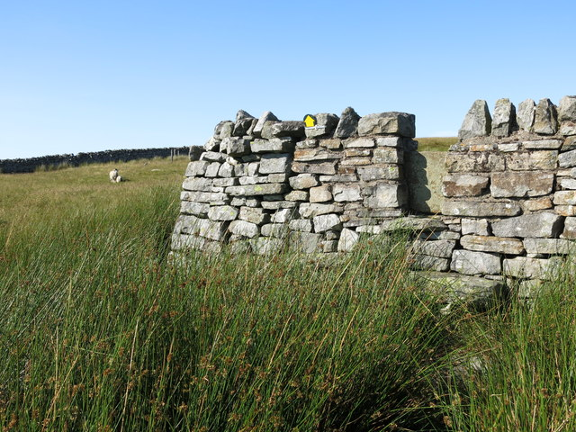 Stile in the intake wall on Brown Dodd Top