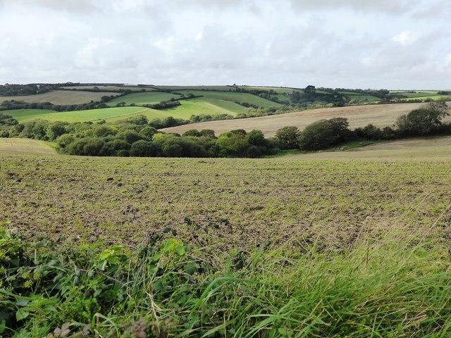 Farmland near Tregaire Barton Farm