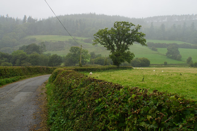Lane towards Branas Lodge