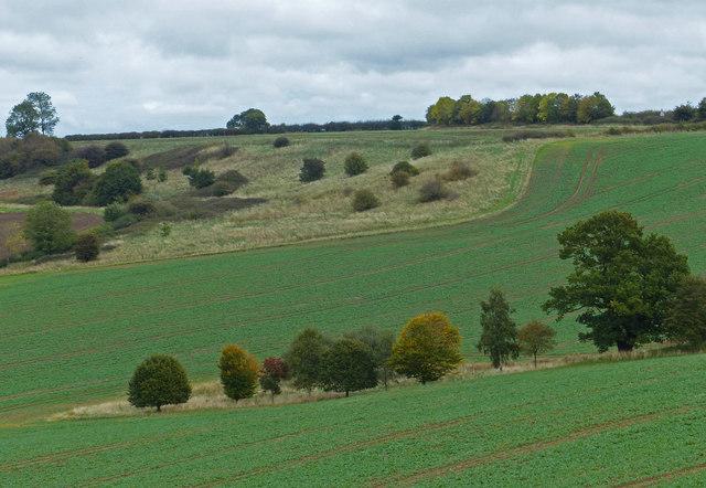 Farmland north of Wardley Hill
