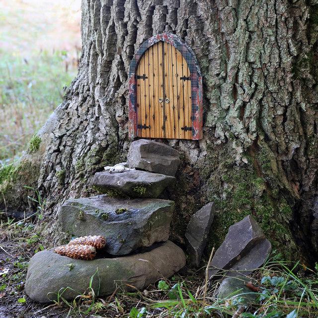 Fairy doors on a tree at Gala Hill
