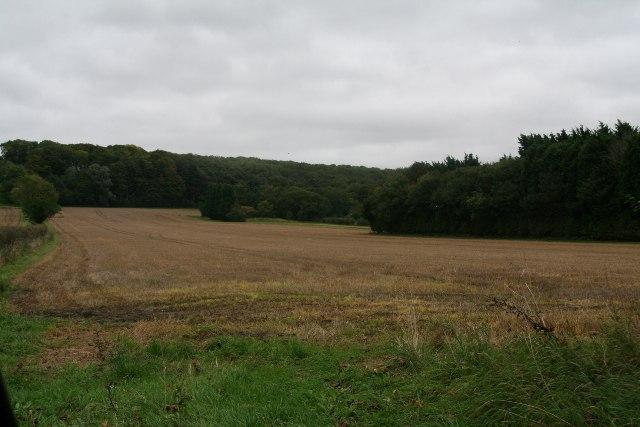 Elsham Hill from Elsham Road, Worlaby