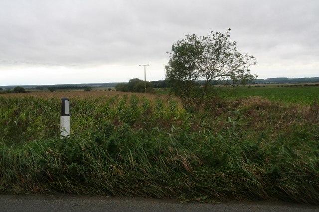 Farmland and Elsham May Bank Drain next to Elsham Road, Worlaby