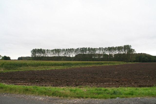 Farmland next to Elsham Road south of Worlaby