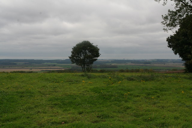 Site of old pit on a hill above Worlaby