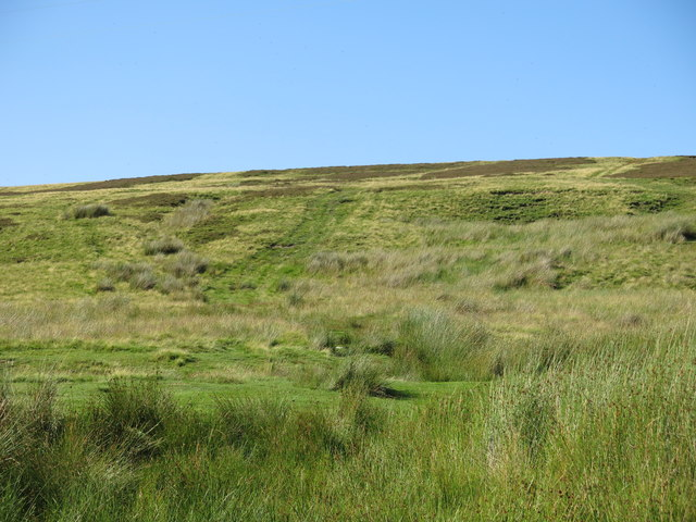 The lower slopes of Brown Dodd