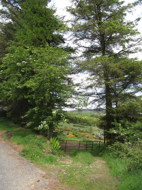 Field gate on the Piedmont-Upper Jenkinstown Road