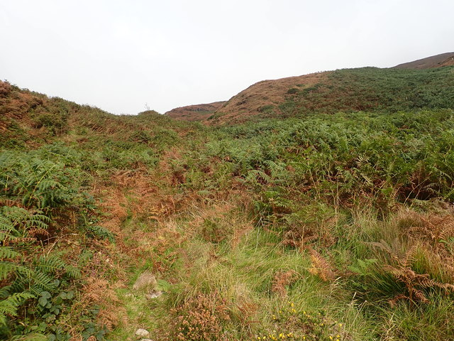Interlocking spurs in the col between Annalough Mountain and Slievenaglogh