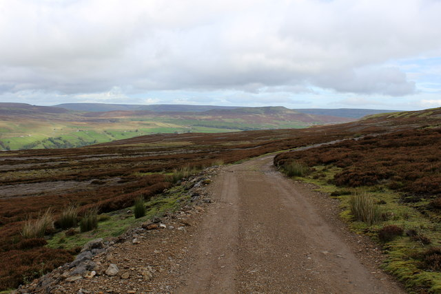 Another Track on Whitaside Moor