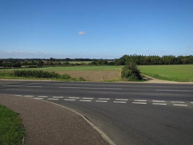 Fields beyond B1135