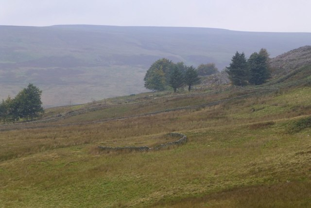 Sheepfold above Middle End Farm