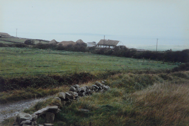 Smallholding, Lough South, 1985