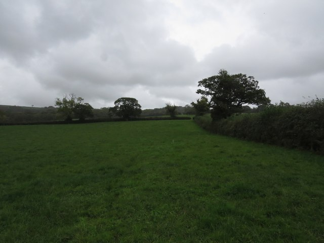Footpath through field near Storridge Farm