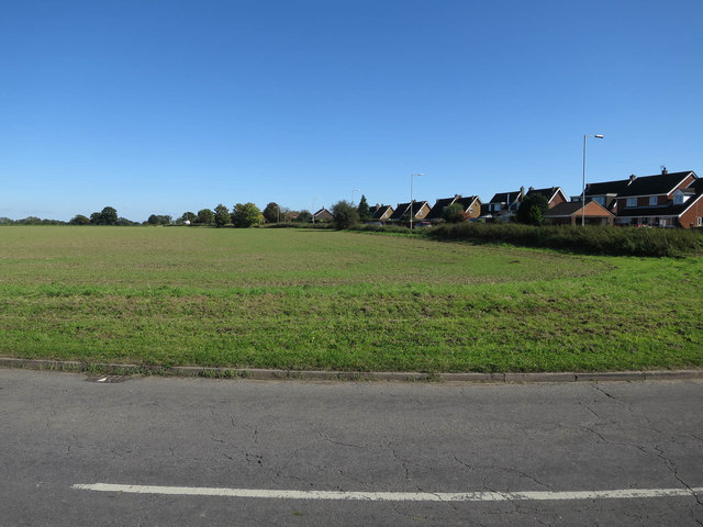 Field by Wymondham