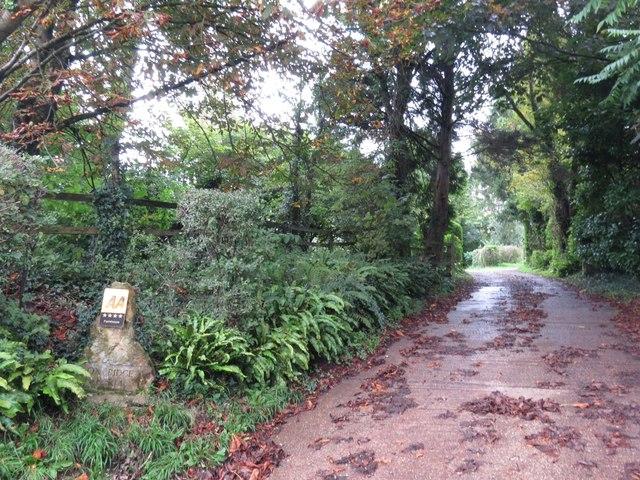 Track to Oxbridge Farm
