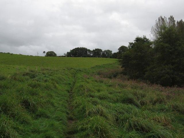 Hardy Way near Slape Manor