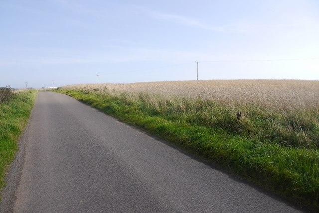 Road by Drumbertnot