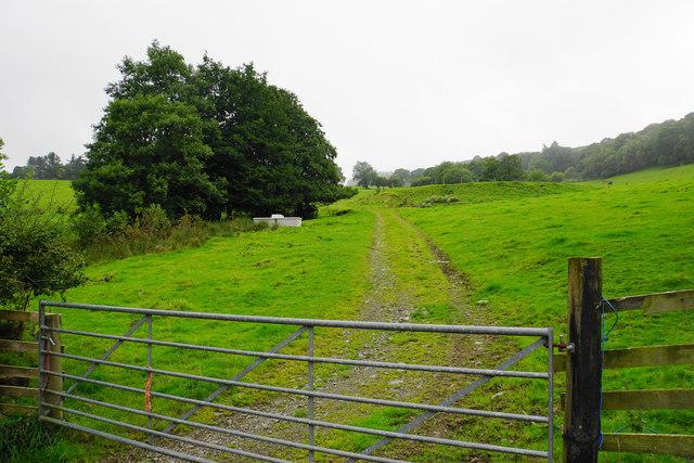 Farm track opposite Ty'n-y-fâch