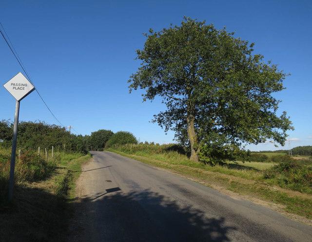 Taverham Road