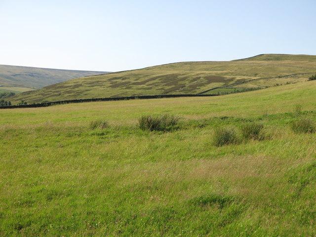 Farmland above Hunter's Well House