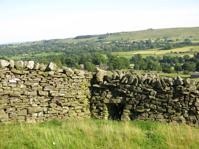 Sheep hole in dry stone wall above Stanhope Gate