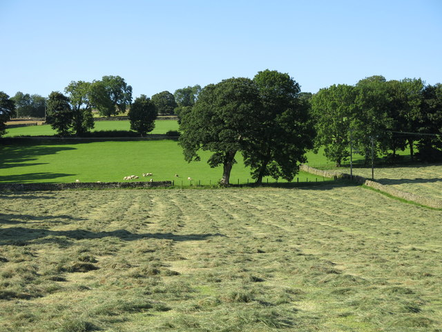Fields above Town End (3)