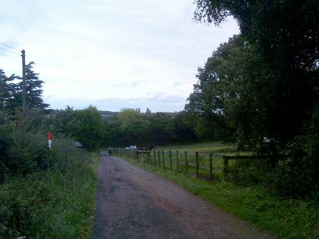 Baggeridge Track