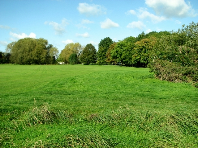 The northern edge of the playing field at Swardeston Common