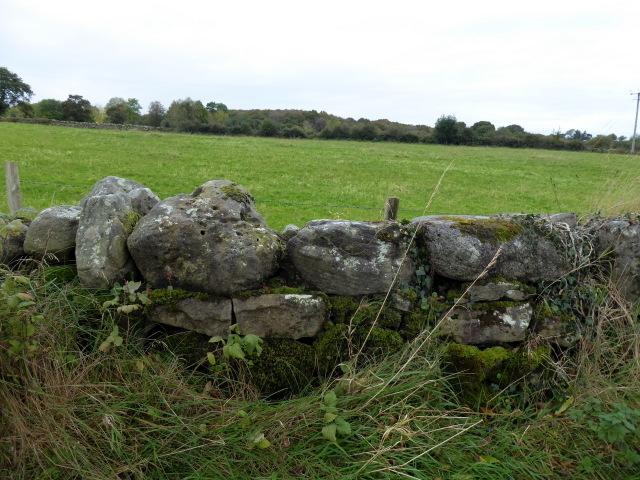 Dry stone wall, Kirlish