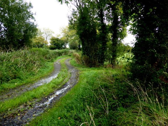 Rough lane, Kirlish