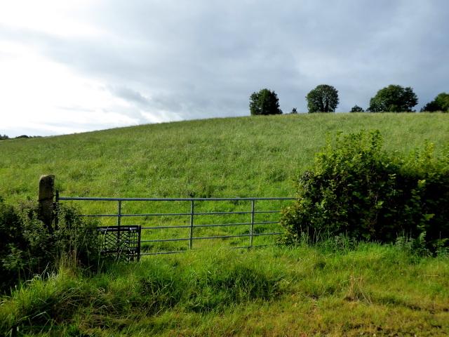 A low hill, Killen