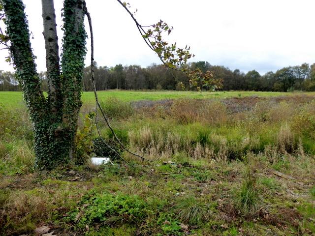 Site of Killen Lough