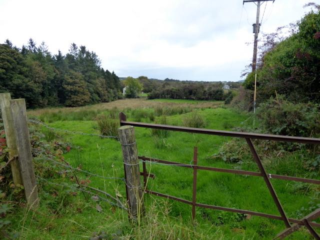 Gate, Drumquin