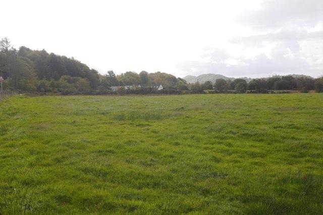 Field, Barcaldine
