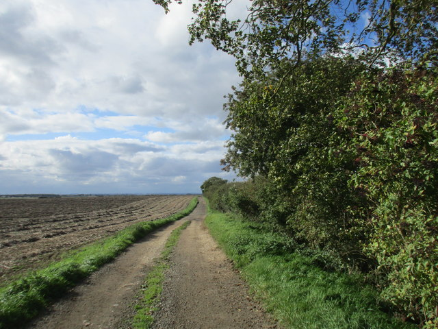 Roadway to Low Baswick Farm