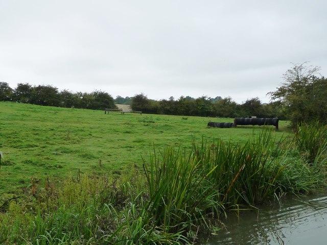 Horse jumps, near Debdale Grange