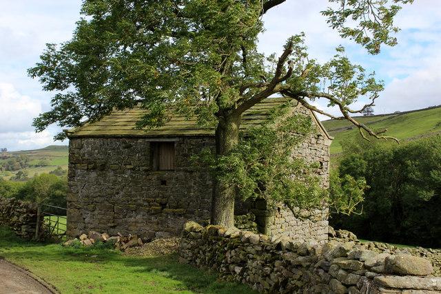 Stone Barn above Crackpot Gill