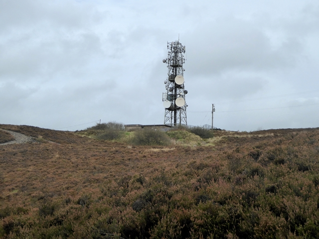 Mobile phone mast at Loughanleagh